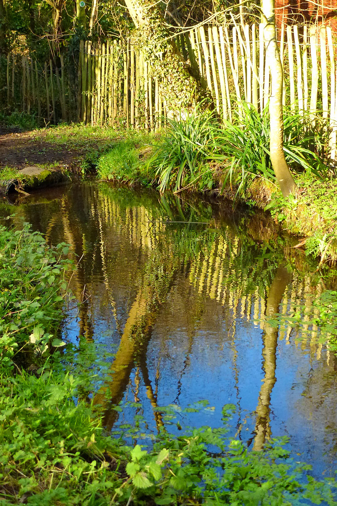 The world 39 s best photos of chalkstream and river flickr for Fish river tree farm
