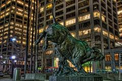 Bull S*it (theobjectivesea photography) Tags: longexposure nightphotography canada calgary art nikon bull hdr highdynamicrange highrises lighttrail citycore d7000 nikkorafsdx18105mmf3556edvr calgarypassionforphotography