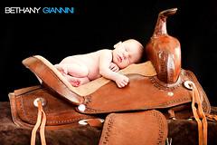 Gage - 7 Days New (Sunflare Orange) Tags: baby photography child newborn saddle gage