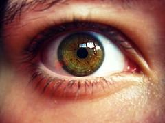 Behind those hazel eyes. (micaelaa *) Tags: iris eye pupil