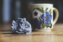 uber-mundane. (j*lewis) Tags: flowers blue coffee table gray mug lint mundane dryer