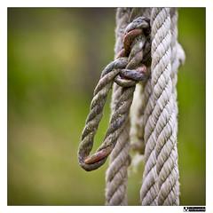 Anudado (oZopanda - David Cvico) Tags: macro nature canon wells rope pozos 60mm knots nudos cuerdas 550d mygearandme flickrstruereflection1
