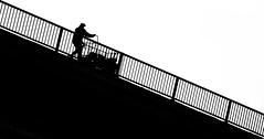 (porCography) Tags: bridge bw abstract man bicycle serbia belgrade load rotated