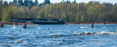 oluic-12.04.14-2689 (burnabylakerowing) Tags: rowing sweep sculling