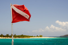 Dive (yarnzombie) Tags: ocean sea puerto nikon flag diving atlantic rico snorkeling april caribbean 2014 icacos d5100
