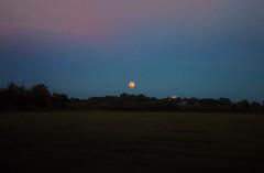 dirty summer moon. (roadkill rabbit) Tags: trees sunset summer moon field night driving farm harvest full