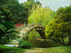 A Little Bit of Paradise (bethrosengard) Tags: photomanipulation digitalart photoart digitallyenhanced digitalmagic bethrosengard