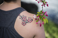 2016-04-30 Emma Coltoff Cherry Blossom Tattoo 002 (Ray Bernoff) Tags: family pink flowers tattoos cherryblossoms flowertattoo womenwithtattoos