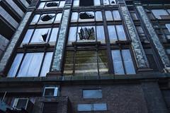 NatureBuilding17 (Aja_) Tags: windows tree stairs bare scene mossy edit