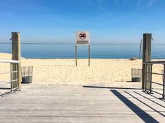 No swimming at Sunken Meadow State Park (Matt McGrath Photography) Tags: newyork beach sign unitedstates longisland northshore kingspark longislandsound sunkenmeadowstatepark