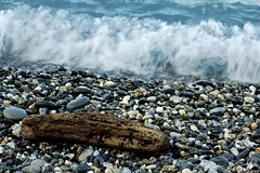 The Tide is Rising (spencer341b) Tags: beach rock rocks waves taiwan wave driftwood hualien