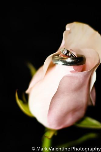Rings (1 of 1)