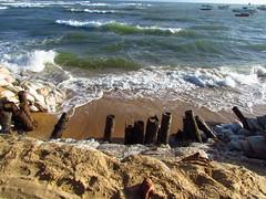 Praia do Forte (Fla*Aguiar) Tags: brazil praia brasil canon do bahia forte sx30 sx30is