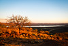 sunsets (tara.m.) Tags: africa tree sunsets gaborone botswana viewfromthehill nikond60 khlaehill gaboronedamn lateafternoonclimb