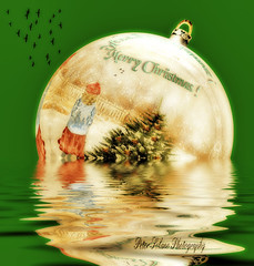 Christmas (Peter Solano. Pursuing a dream!) Tags: christmas red reflection tree green water girl birds yellow ball catchycolors seasonal ornament