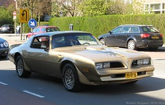 Pontiac Firebird 1978 (XBXG) Tags: auto old usa classic haarlem netherlands car vintage us automobile nederland voiture american firebird pontiac 1978 paysbas ancienne américaine 81vp15