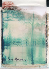 Winter chill (emilie79*) Tags: winter paris blurry parcmonceau polaroid180 iduvfilm