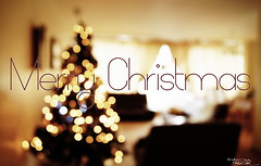 Merry Christmas  (AXEHD) Tags: christmas tree home holidays bokeh room newyear christmastree ornaments merrychristmas 2012