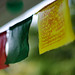 prayer flags (nosha) Tags: usa newjersey nj jersey lightroom 2011 nosha 0mmf0 nikond7000