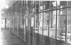 York Ward, Manor Hospital (Voices Through Corridors) Tags: ward manor