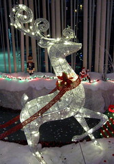 Prancer's Inner Glow (Puzzler4879) Tags: christmas reindeer christmasdecorations pointshoot canonpowershot canondigital canonaseries canonphotography wonderfulphotos flickraward flickrbronzeaward exemplaryshots a580 canona580 canonpowershota580 powershota580 lighteddecorations level1photographyforrecreation level1autofocus reindeerdecorations lightedchristmasdisplays
