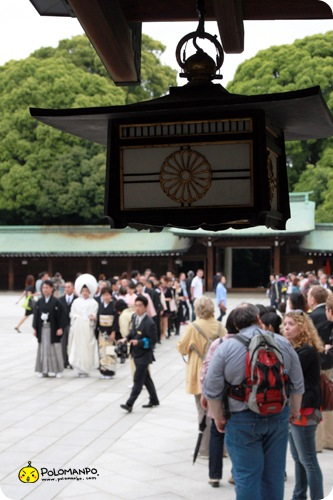 201006-明治神宮