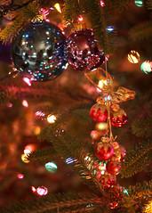 {Ornaments} (Farmgirl18) Tags: christmas holiday tree colors pine bells lights branch bokeh evergreen bow bulbs needles multicolored jingle grenn bough