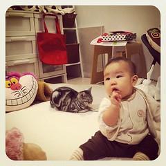 小林幸子に釘付け。#baby