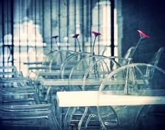 A touch of pink (Caoimhë) Tags: flowers blue españa stilllife flores flower azul spain dof chairs flor repetition tables sur fiori fiore azzurro sedie malaga mesas málaga sillas repetición tavole puntofuga ltytr2 ltytr1 ltytr3 ltytr4