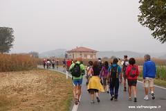 23 (vie francigene) Tags: pellegrinaggio cammino viafrancigena incontrodeipellegrini