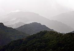Stormy Weather [Explored - up] (NatiLady) Tags: brazil mountains verde green nature rain island nikon natureza chuva parati stormy vegetation ilha montanhas vegetao mataatlntica heavyclouds nuvenscarregadas