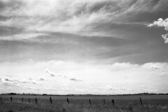 plumpton ii (naughtyword) Tags: clouds canon 150 25 shire soupkitchen rodinal plumpton melton 500n efke homedeveloped paddocks rockbank 8mins westernbasaltplains ruraldreaming