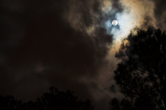 It was a dark and stormy night (The Suss-Man (Mike)) Tags: longexposure trees moon nature silhouette fog night clouds georgia fullmoon spooky nighttime lagrange tamron1750mm troupcounty thesussman sonyalphadslra550