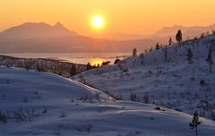 The sun has returned! (leifolsen) Tags: trees winter sea sky panorama sun snow mountains sol water norway landscape golden norge scenery europe january himmel dal valley scandinavia 1001nights soe mainland nordnorge senja fjell landskap trr dalen returned ineffable northernnorway tromscounty gyllen senjaisland 1001nightsmagiccity kaperdalen onlythebestofnature ringexcellence dblringexcellence tplringexcellence eltringexcellence rememberthatmomentlevel4 astonishingqualitygroup rememberthatmomentlevel1 rememberthatmomentlevel2 rememberthatmomentlevel3 rememberthatmomentlevel5 rememberthatmomentlevel6