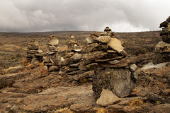 Kilimajaro - Machame Route day 2 (inaina10) Tags: africa stella plants kilimanjaro fauna trekking tanzania tents flora rocks hiking mount glaciers uhuru camps porters machameroute