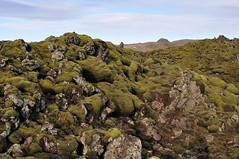 Somewhere in Iceland (marcomes) Tags: panorama 35mm landscape iceland islandia moss muschio islanda ringroad 2011 d90 eldhraun