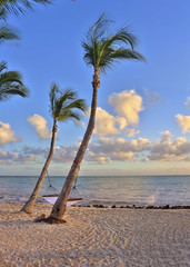 Palm Trees and Hammocks (junglejennifer) Tags: sunset sky slr clouds canon keys eos nap florida palmtrees rest hdr peacefull southernmostpoint andhammocks bestplacetovisit