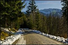 Auf dem Weg nach oben (BM-Licht) Tags: schnee winter mountain snow mountains berg forest germany bayern deutschland bavaria nikon berge wald benediktenwand benediktbeuern d7000 windpsslkopf