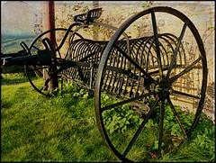 A Bumpy Ride (Explored 2 February 2012 No 436) (Audrey A Jackson) Tags: history texture grass metal rust farm explorer machinery fields pansonicdmctz3