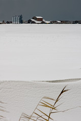 anita's farm (aleazzo) Tags: winter italy snow barn zeiss dusk farm g sony contax carl silos anita 90mm plain garibaldi 90 f28 comacchio sonnar nex5n