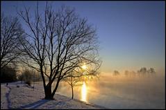 Varennes (@lain G) Tags: france nature neige iledefrance givre varennes seinemarne basedeloisirs leuropepittoresque