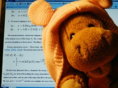 Stop Working Now!!! (Rodianov) Tags: work happy cool funny teddy story stop physics pupazzo ippopotamo hyppo scienc wprking