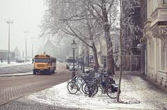 a sleeping town (Tafelzwerk) Tags: city schnee trees snow bus maastricht town nikon empty leer bikes crossprocessing stadt schoolbus bäume fahrrad fahrräder schlaf schulbus speeping strase nikkor35mmf18 d7000 nikond7000 tafelzwerk tafelzwerkde