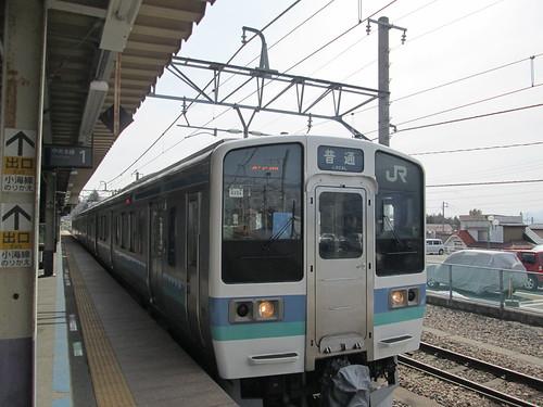 Y-N (34)