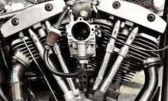 TWIN V (coronamike31) Tags: seattle bike rat harley motorcycle