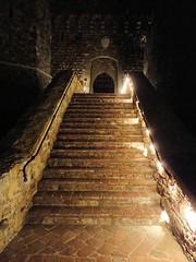 castle winery vineyards grapes napavalley napa castello amorosa castellodiamorosa castleamorosa