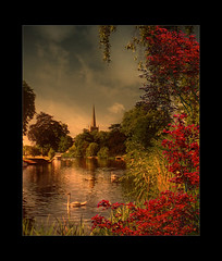 The River Avon (Chariots_of_Artists) Tags: uk england nature river swan shakespeare stratford riveravon doubleniceshot tripleniceshot mygearandme mygearandmepremium mygearandmebronze mygearandmesilver mygearandmegold mygearandmeplatinum mygearandmediamond mygearandme6platinum mygearandme2premium mygearandme3bronze mygearandme5gold flickrstruereflection1 flickrstruereflection2 flickrstruereflection3 flickrstruereflection4 flickrstruereflection5 flickrstruereflection6 flickrstruereflection7 flickrstruereflectionexcellence