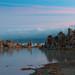 2011 Mono Lake-2757