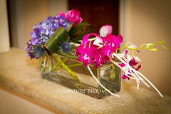 Hydrangea & Orchid Flower Arrangement, Los Gatos CA (Signature Bloom) Tags: pictures flowers wedding decorations orchid flower fall floral for design purple photos designer thistle events sanjose images tulip bridesmaid designs florist vendor siliconvalley hydrangea weddings bridal centerpiece decor peninsula southbay ideas weddingflowers bouquets arrangements sanjoseca losgatosca florists centerpieces weddingideas headtable sweethearttable dendrobiumorchid 95121 95032 weddingflorist purplewedding flowersforwedding signaturebloom losgatosflowers wwwsignaturebloomcom losgatosweddingflorist flowerforwedding bridalflorist losgatosflorist weddingfloristlosgatos