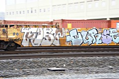 FOST - CURSE (dim9th) Tags: graffiti trains curse fost